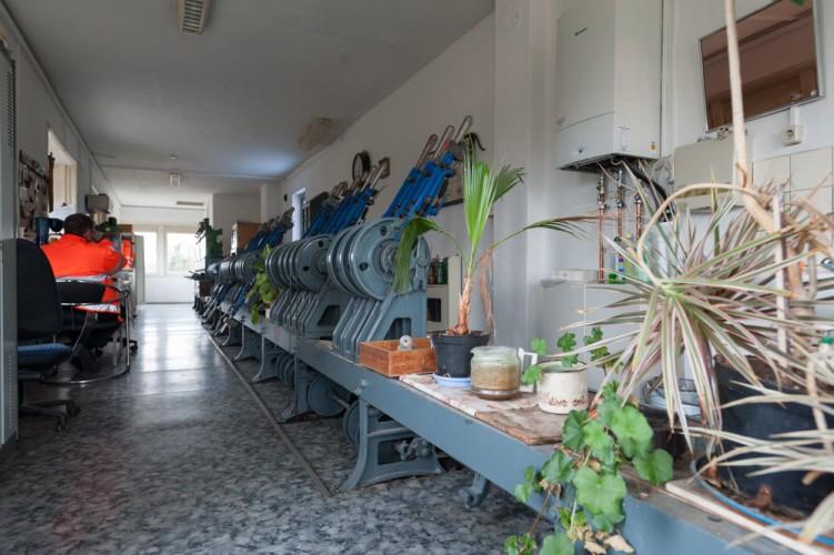 Topfpflanzen reihen sich neben Weichenstellhebeln auf, Stellwerk Bahnhof Wriezen